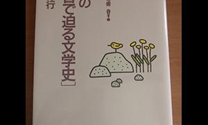 田村の〈本音で迫る文学史〉 (受験面白参考書)